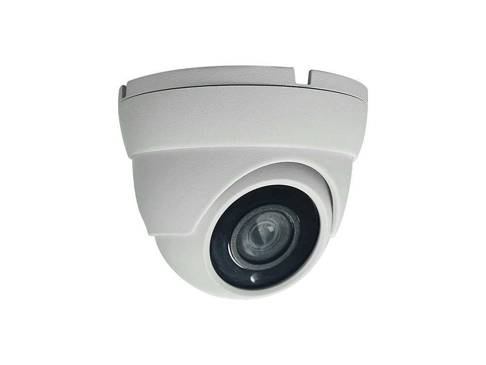 Full HD 2.0MP Dome IP Camera with 12PCS SMD IR LED