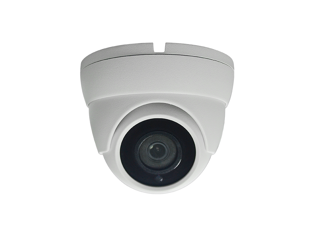2MP Eyeball Dome Starlight CCTV Camera